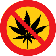 US states legalise cannabis – but Google, Twitter & Facebook say no